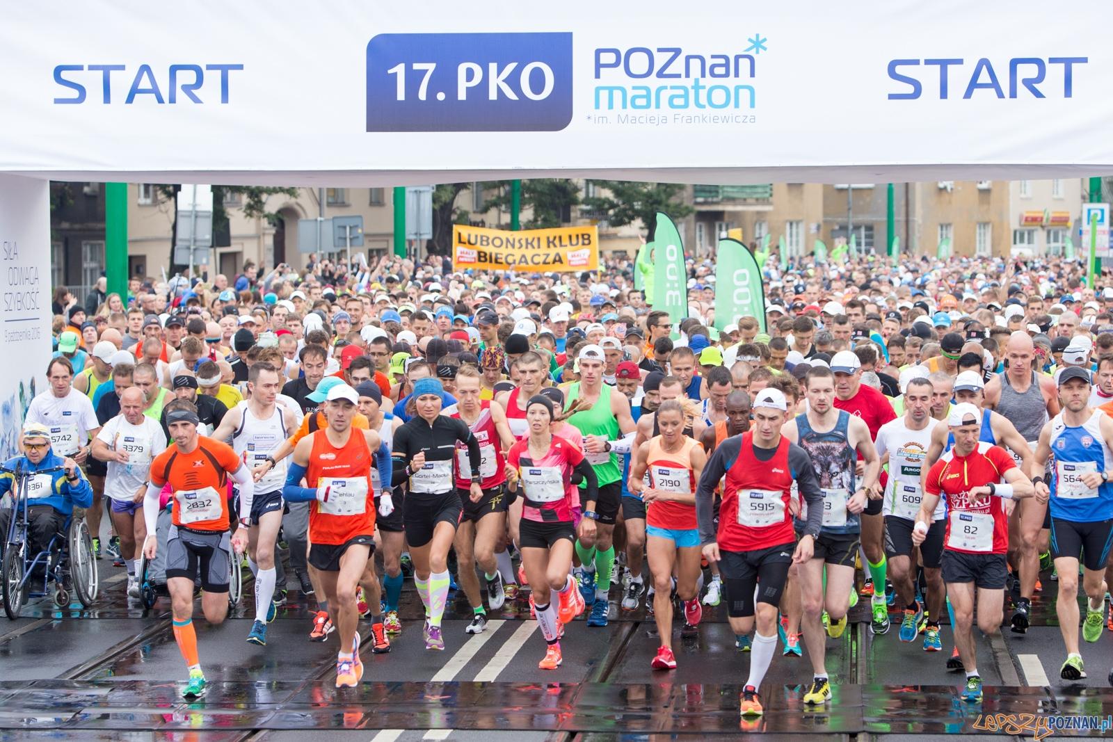17. PKO Poznań Maraton  Foto: lepszyPOZNAN.pl / Piotr Rychter