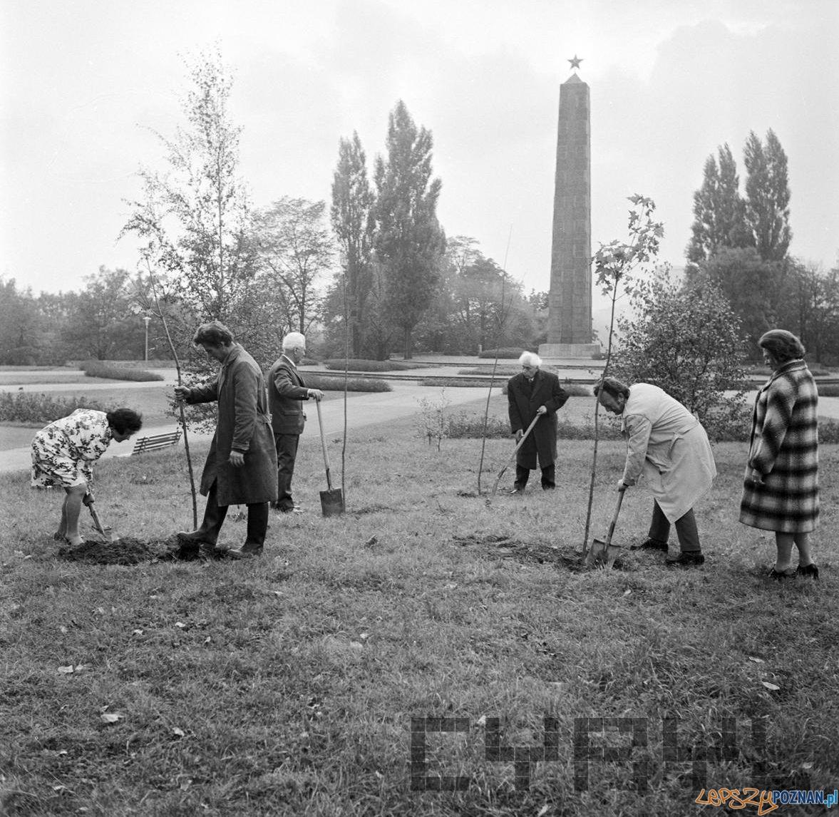 Członkowie bułgarskiego NFJ sadzą drzewka przyjaźni w parku na Cytadeli - 24.10.1974