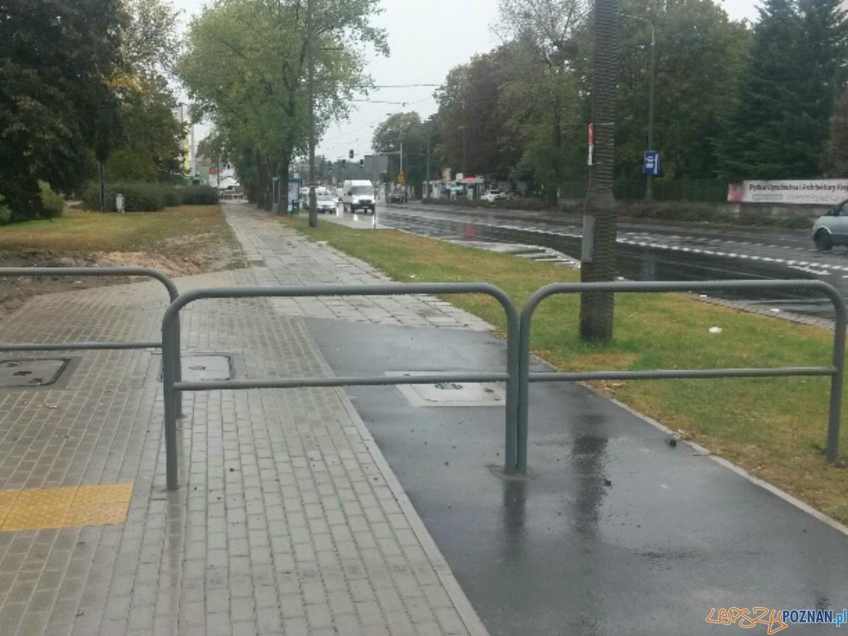 Barierki dla bezpieczeństwa pieszych  Foto: UMP