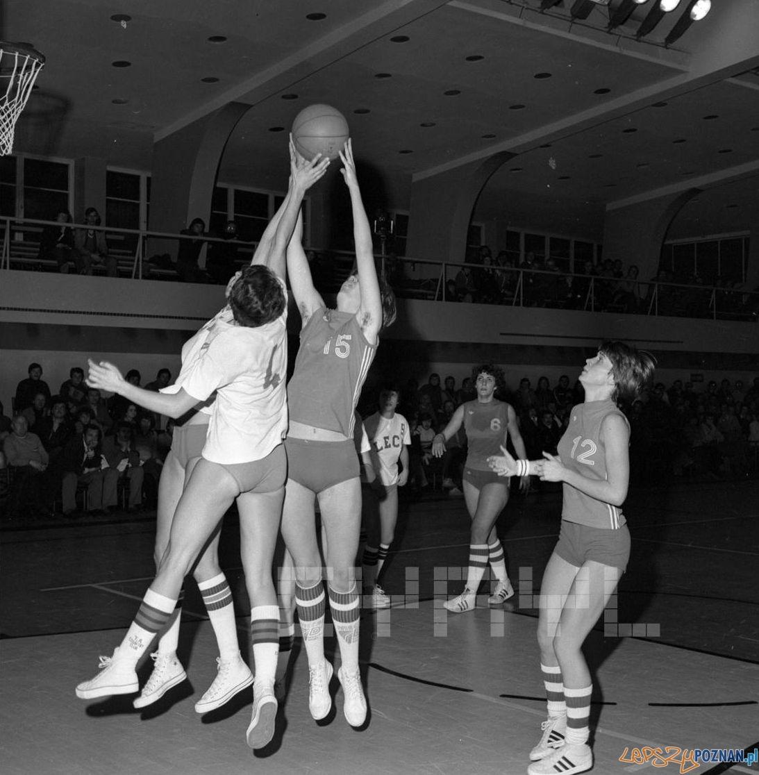 Lech Poznań - Spójnia Gdańsk - mecz w hali przy ul. Chwiałkowskiego - 22.10.1978  Foto: Stanisław Wiktor / Cyryl