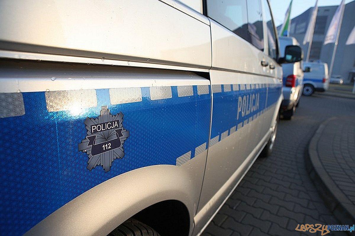Nowe policyjne Volkswageny  Foto: