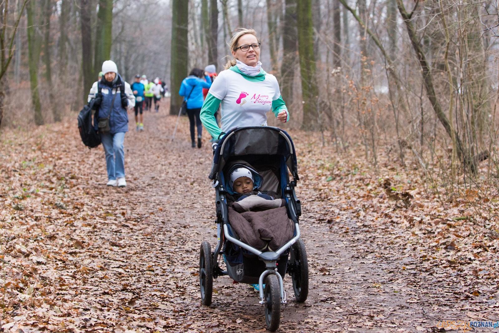 City Trail Poznań - bieg 3  Foto: lepszyPOZNAN.pl / Piotr Rychter