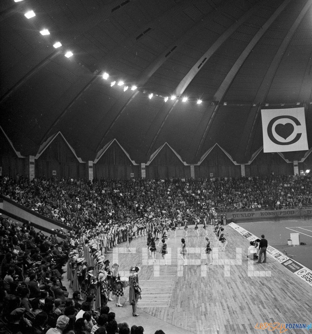 Björn Borg w Hali Arena