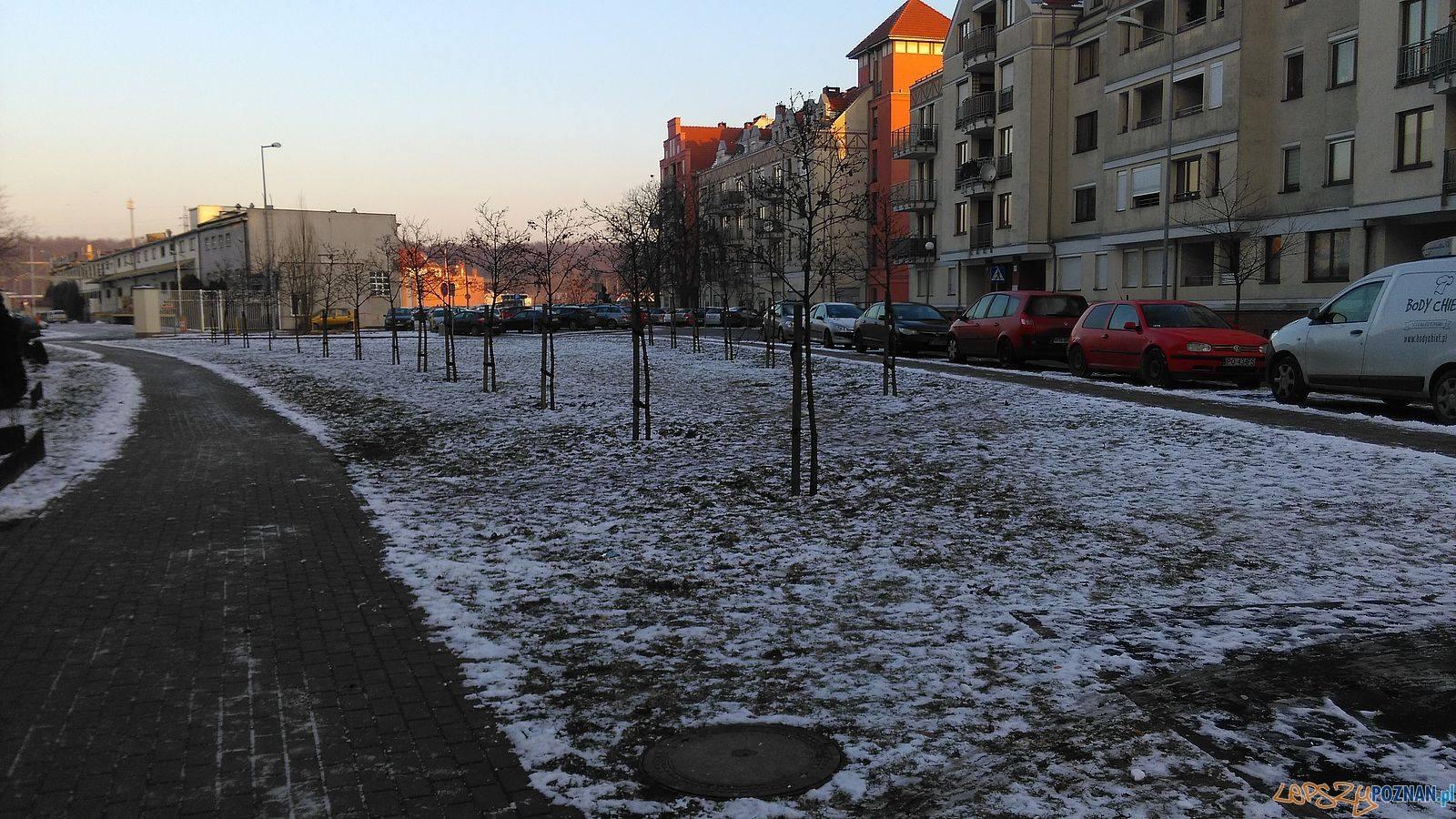 Skwer przy ul. Szyperskiej  Foto: Tomasz Dworek