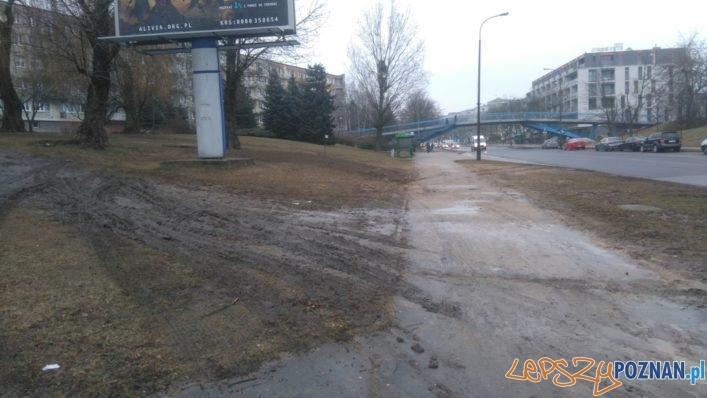 Ul. Słowiańska - rozjechany trawnik