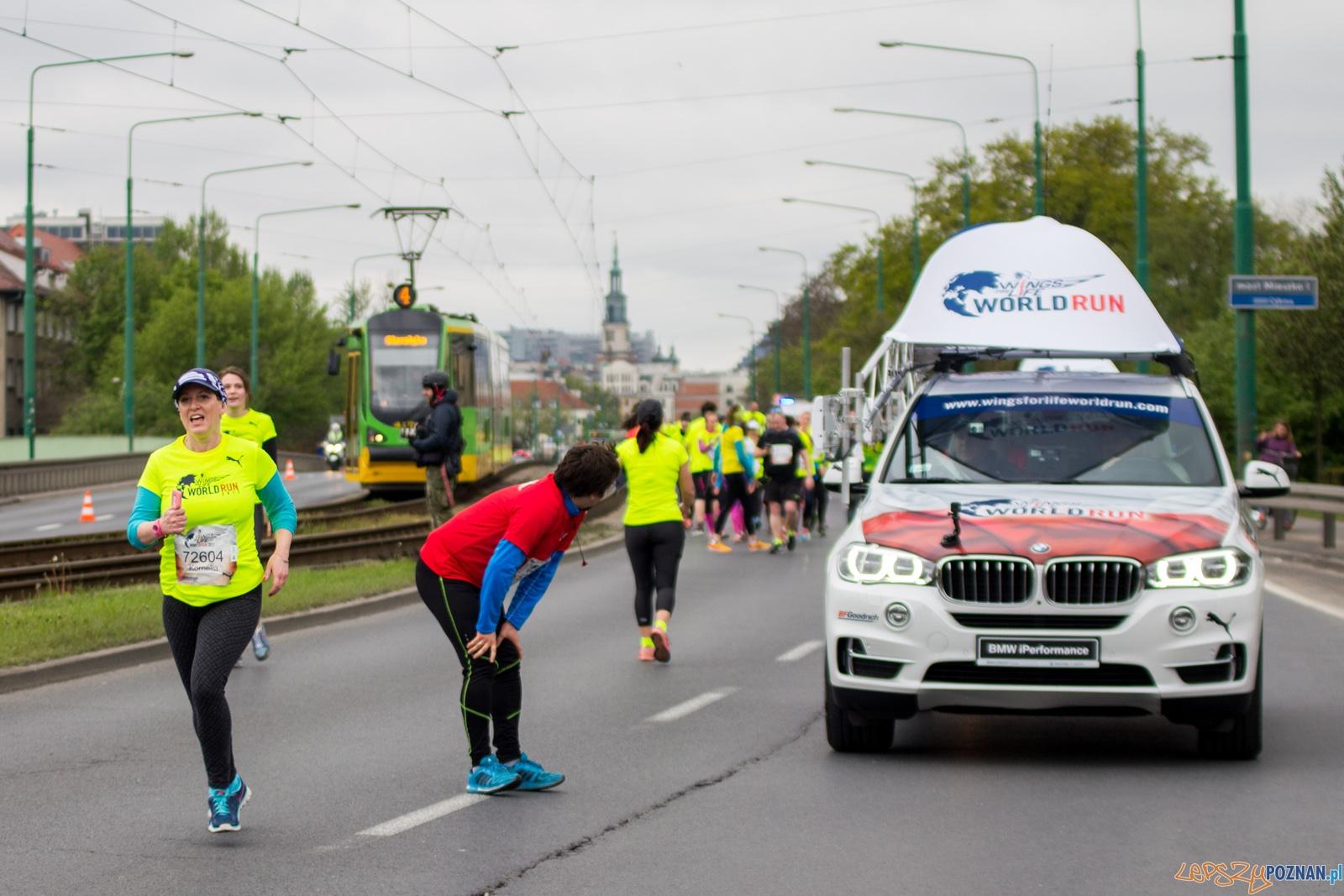 Wings for Life World Run  Foto: lepszyPOZNAN.pl / Ewelina Jaśkowiak