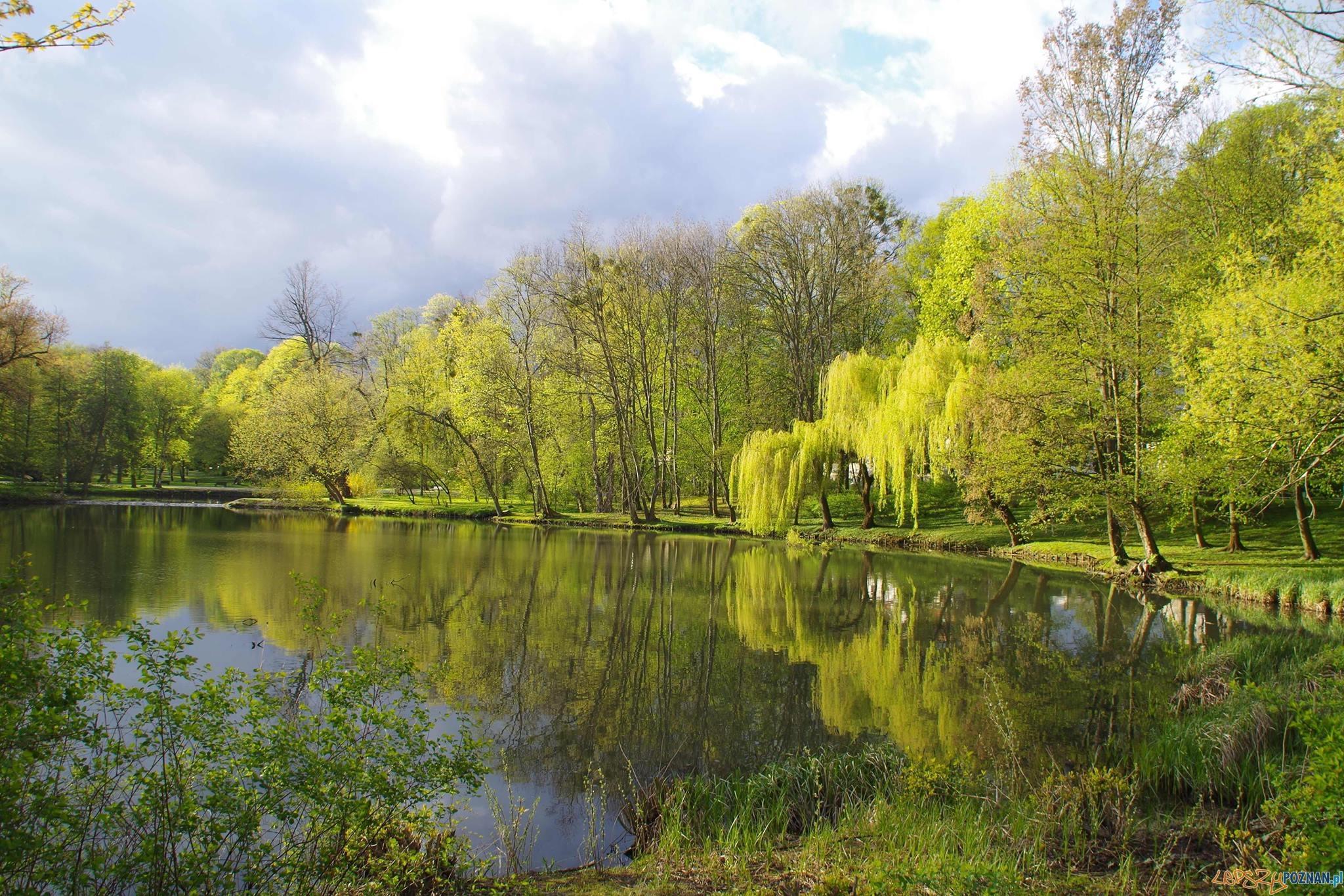 Park Sołacki  Foto: Justyna Kędra / PoPoznaniu