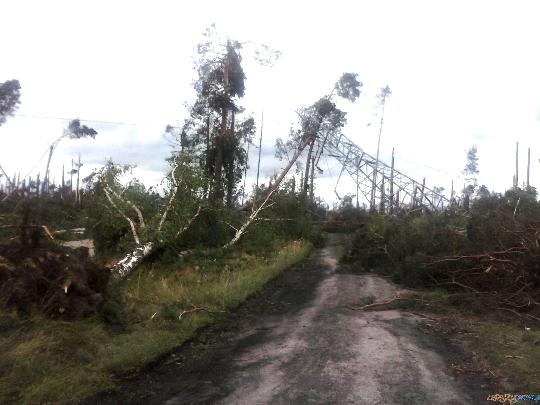 Nadal wiele domów bez prądu po piątkowych nawałnicach - linia_energetyczna Chojnice - Brusy  Foto: Enea Operator