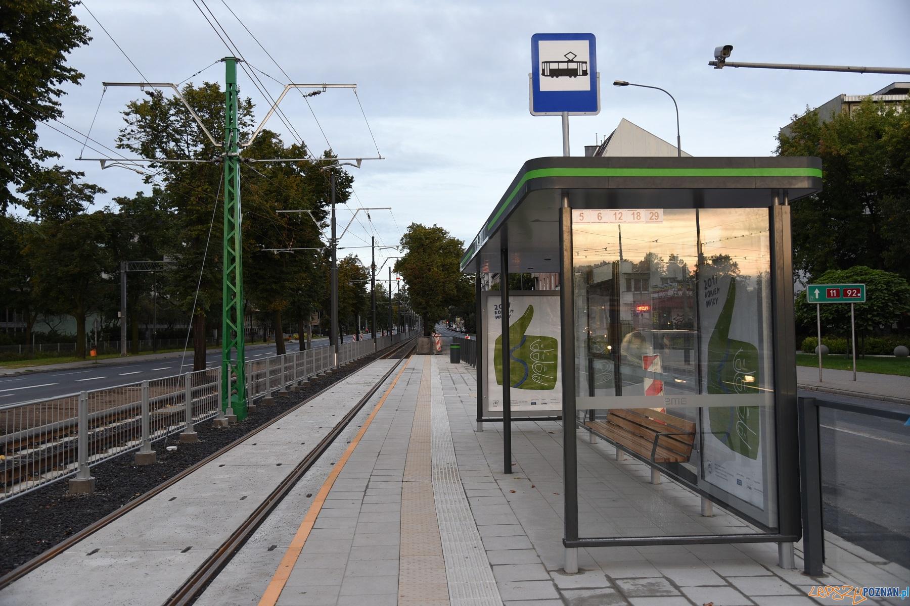 zielony słup trakcyjny przy AWF  Foto: UMP