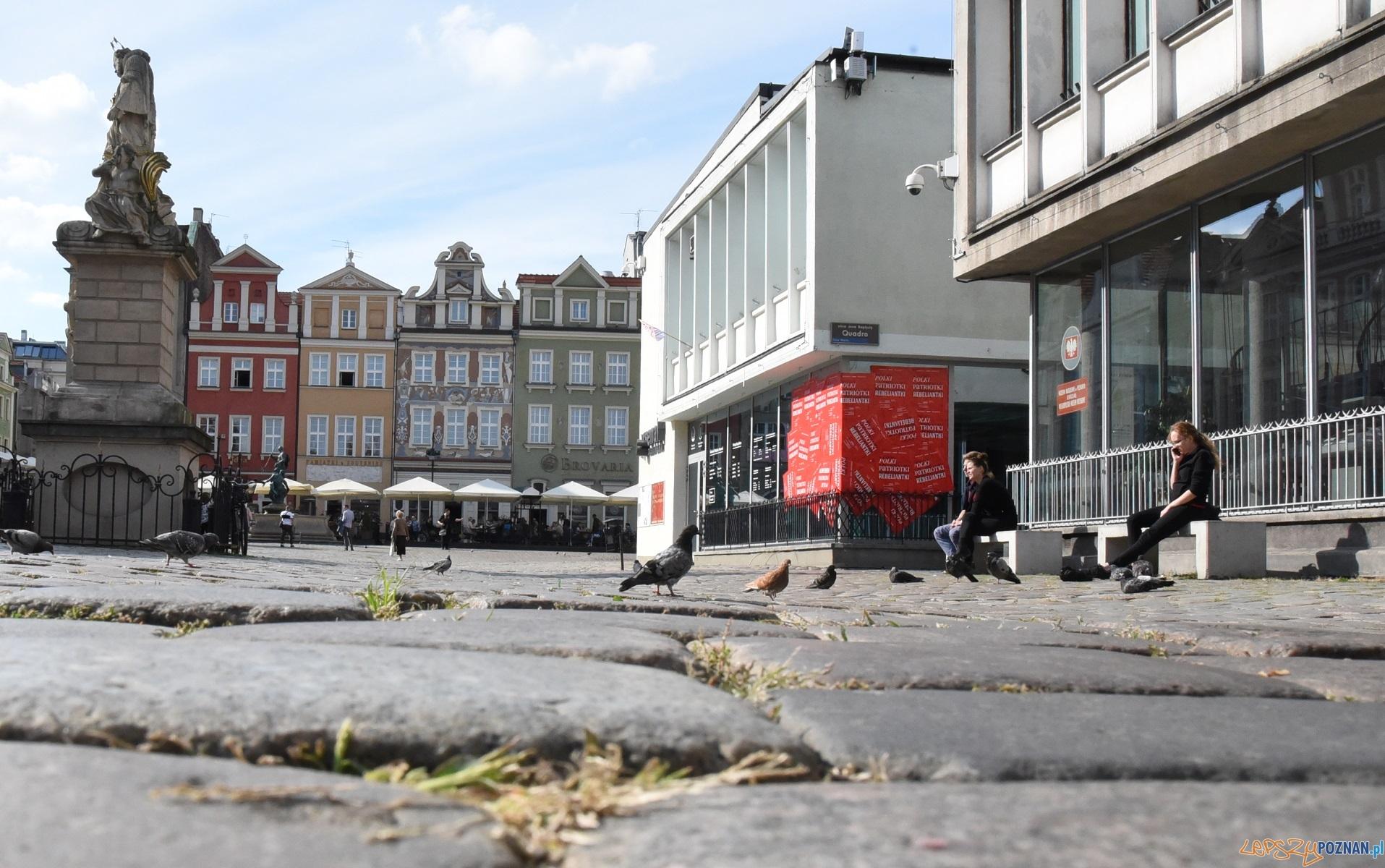 Stary Rynek - jaka będzie nawierzchnia?  Foto: UMP