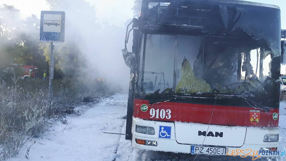 Pożar autobusu w Złotnikach  Foto: OSP Suchy Las