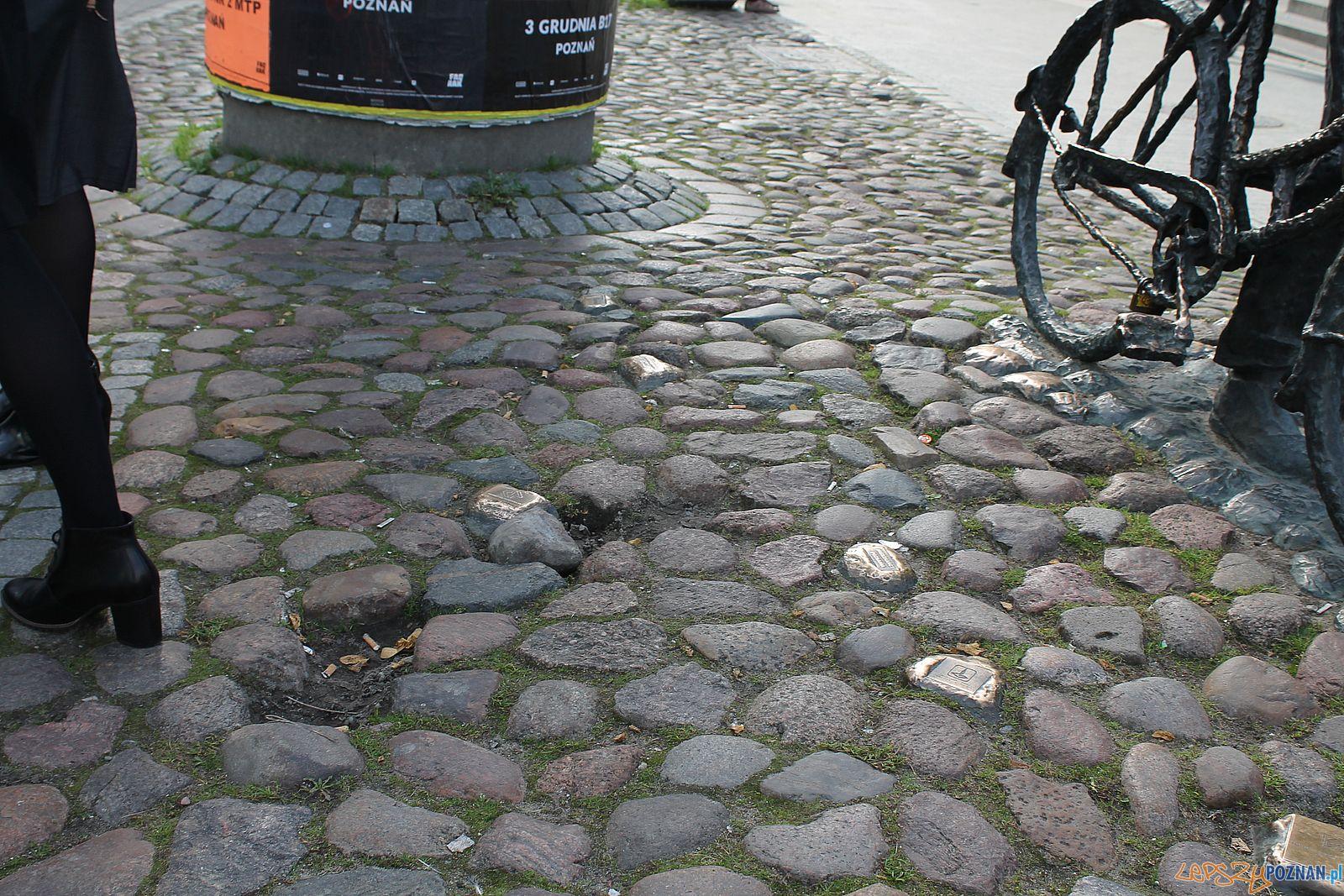 Stary Marych nieporządek wokól pomnika (6)  Foto: T. Dworek / ROSM