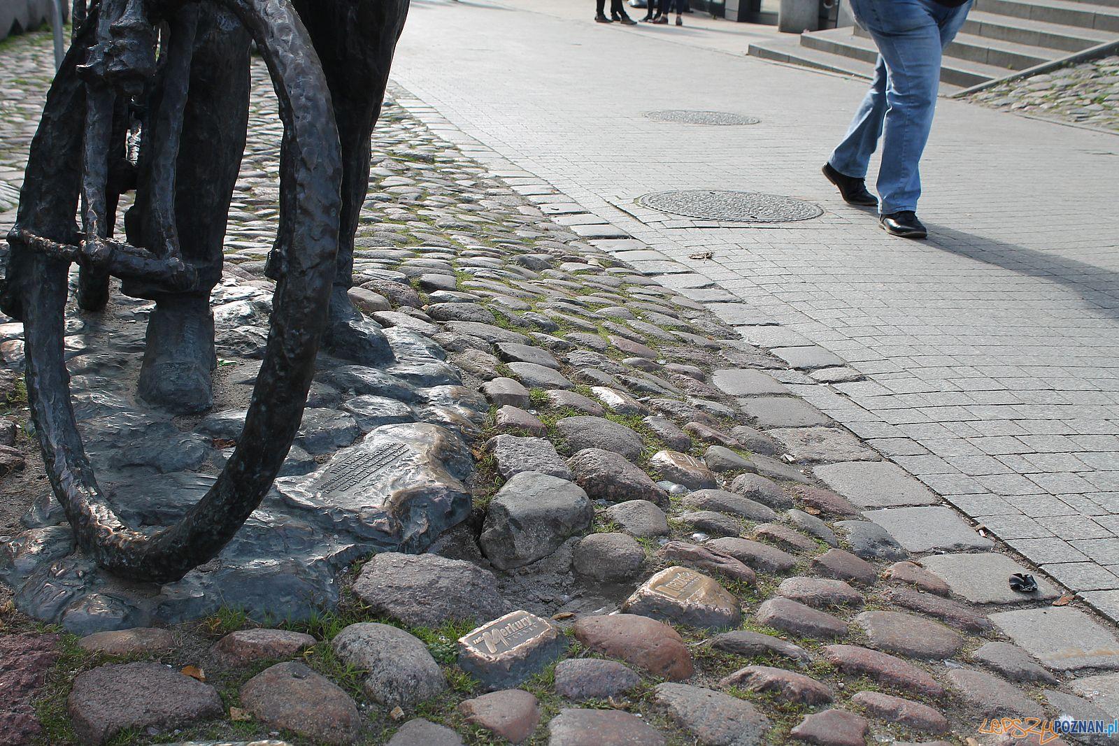 Stary Marych nieporządek wokól pomnika (5)  Foto: T. Dworek / ROSM