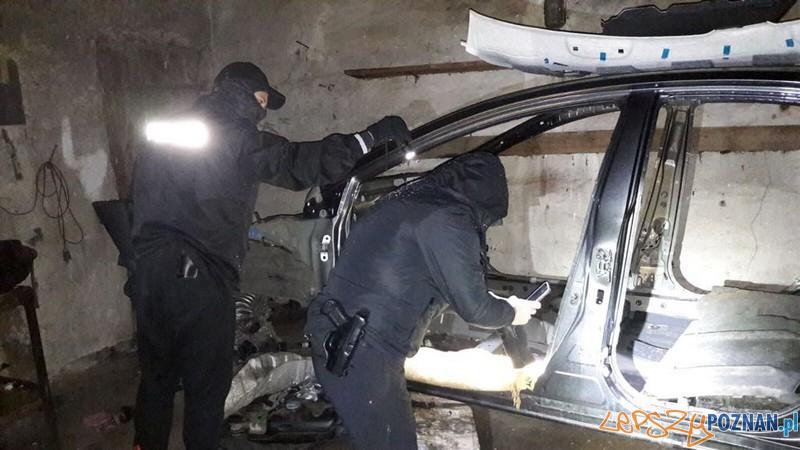 Policjanci zlikwidowali dziuplę  Foto: KMP Poznań