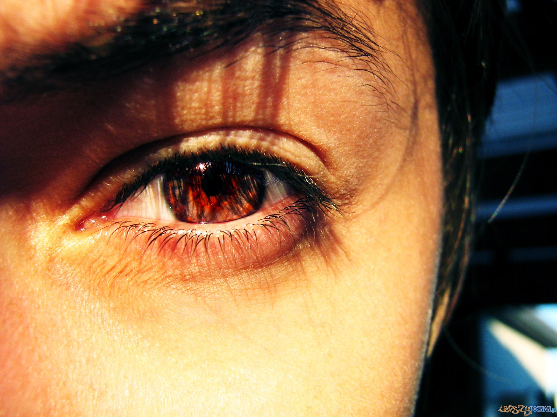 Oko  Foto: Thomas de Florie - freeimages.com/photographer/Gomez_f-57767