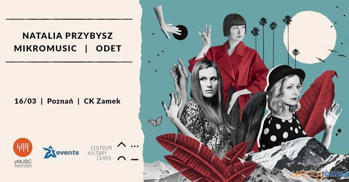 Koncert Natalii Przybysz  Foto: materiały prasowe