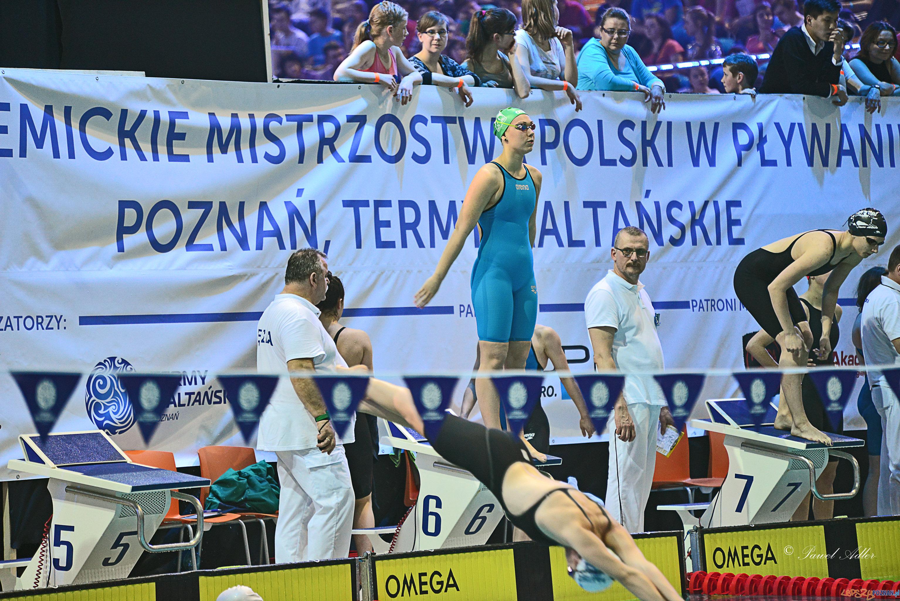 Akademickie Mistrzostwa Polski w Pływaniu  Foto: AZS Poznań / materiały prasowe