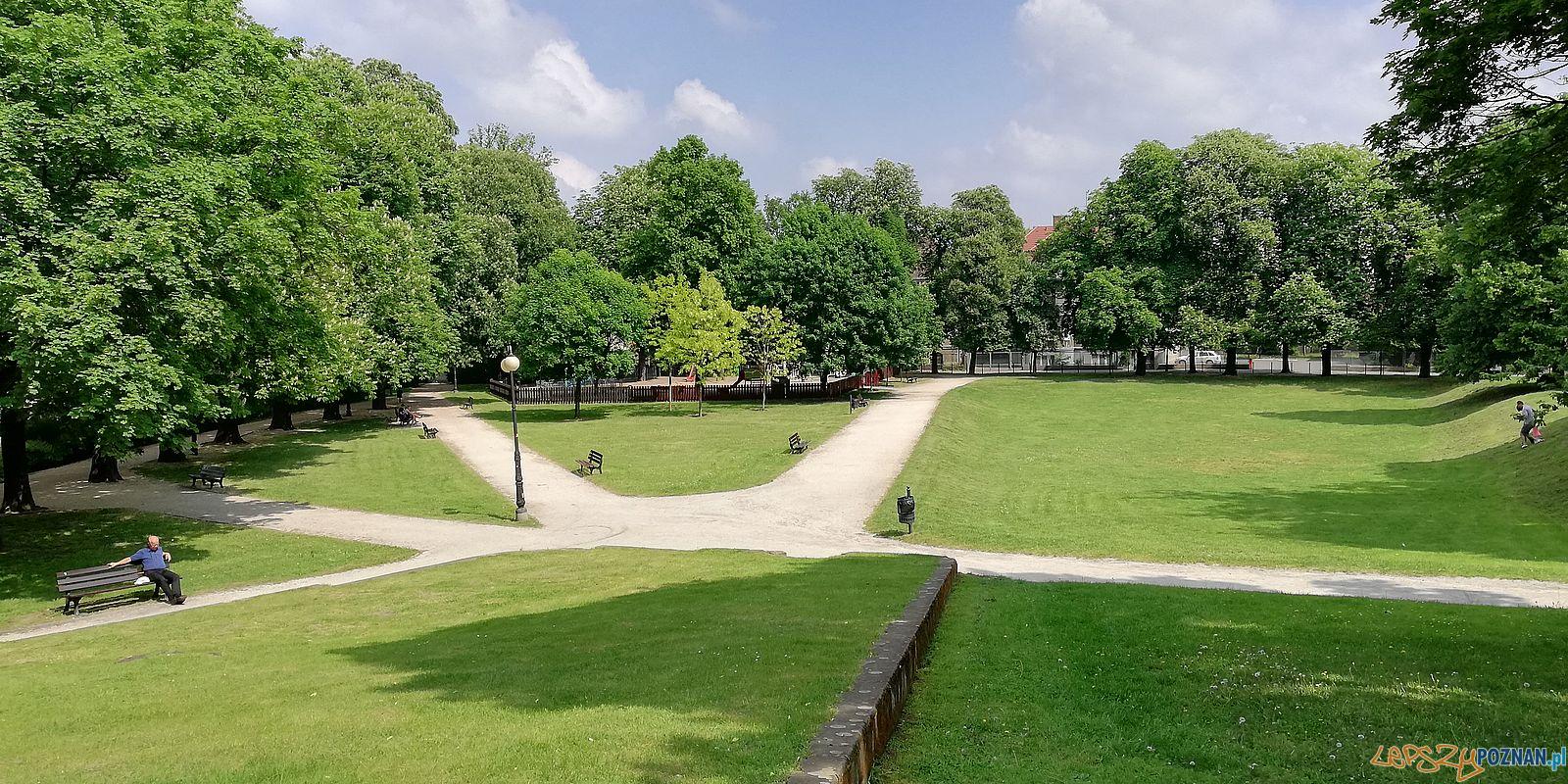 Park Wieniawskiego  Foto: T. Dworek / ROSM