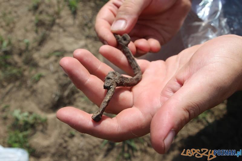 Odkrycie archeologiczne - wieś Gać pod Murowaną Gośliną - ostroga  Foto: Monika Paluszkiewicz / UMiG w Murowanej Goślinie
