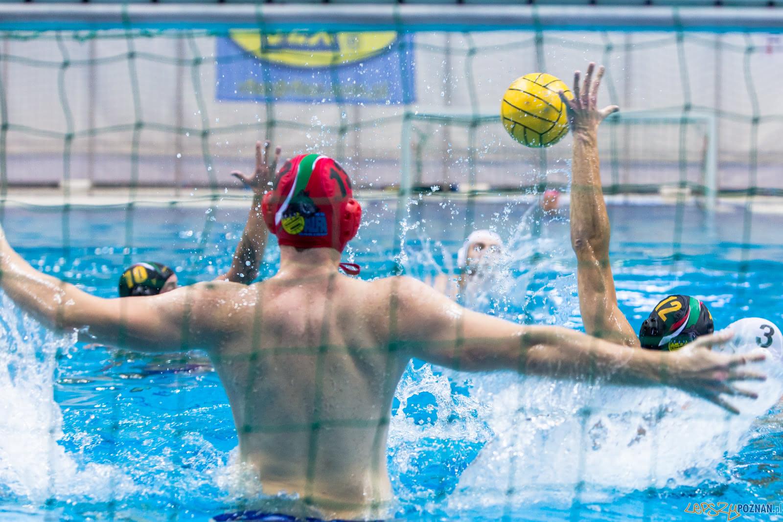Waterpolo Poznań - Alfa Gorzów  Foto: lepszyPOZNAN.pl/Piotr Rychter