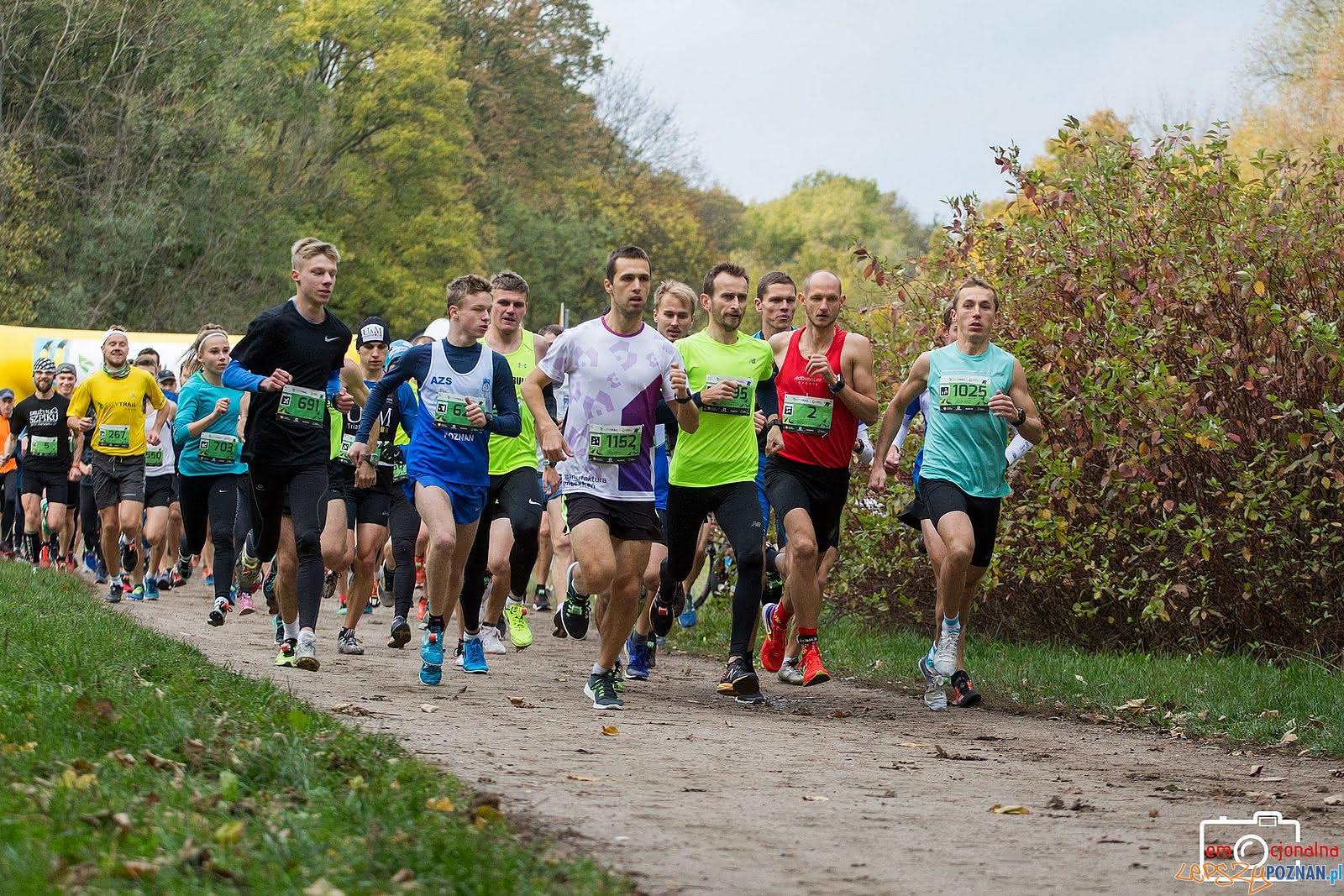 City Trail nad Rusałką  Foto: Katarzyna Goździewska / City Trail Nationale Nederlanden