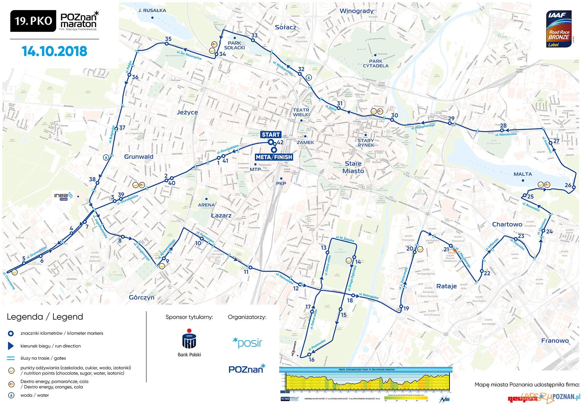 19.PKO Poznań Maraton  Foto: materiały prasowe