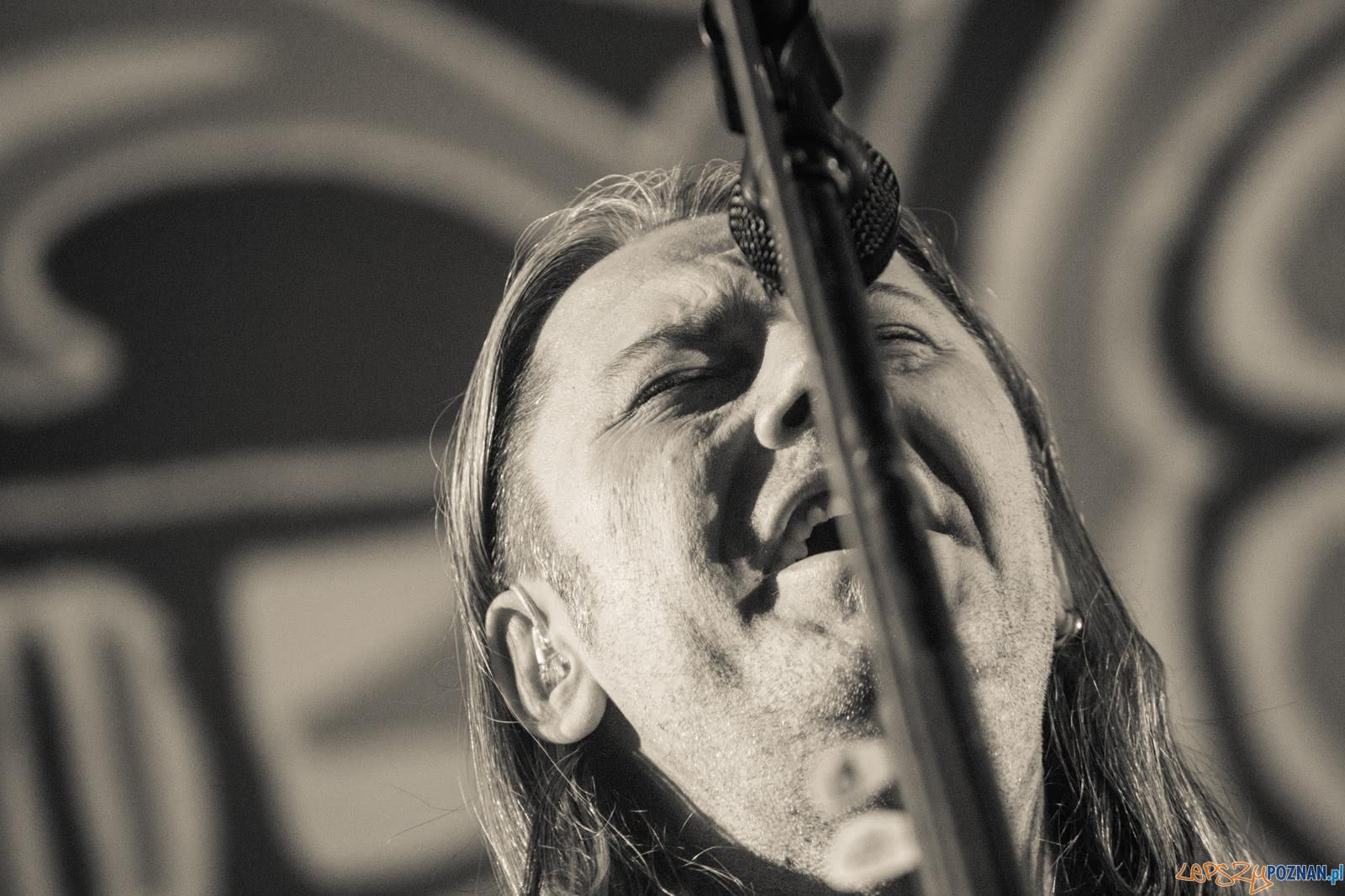 Cree  Foto: lepszyPOZNAN.pl / Ewelina Jaśkowiak