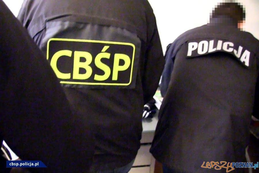 Zatrzymania za wyłudzenia dotacji unijnych  Foto: CBŚP