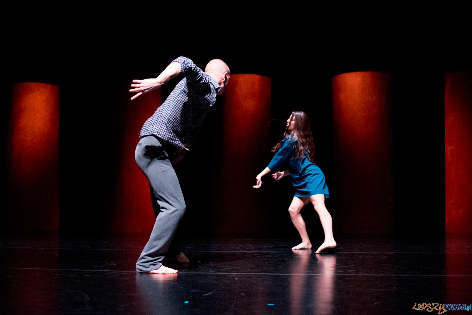 Polka Polski Teatr Tańca  Foto: lepszyPOZNAN.pl / Ewelina Jaśkowiak