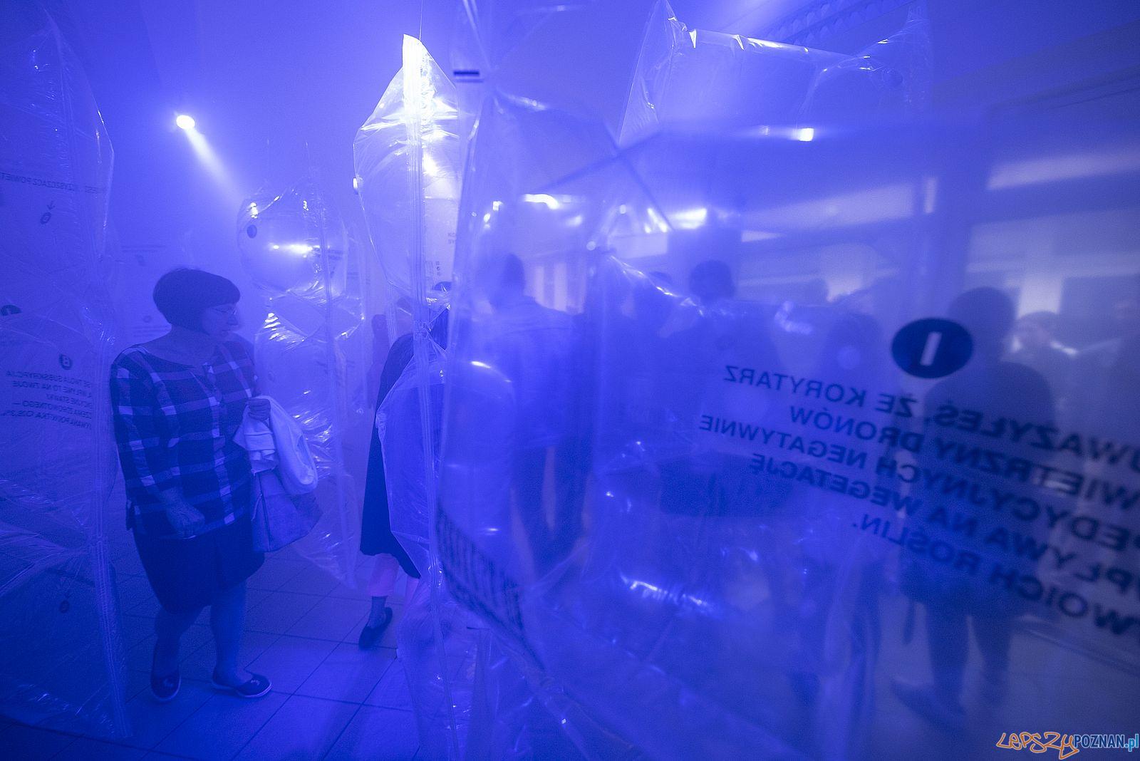 Poznań Design Festiwal  Foto: Poznań Design Festiwal / Jędrzej Franek