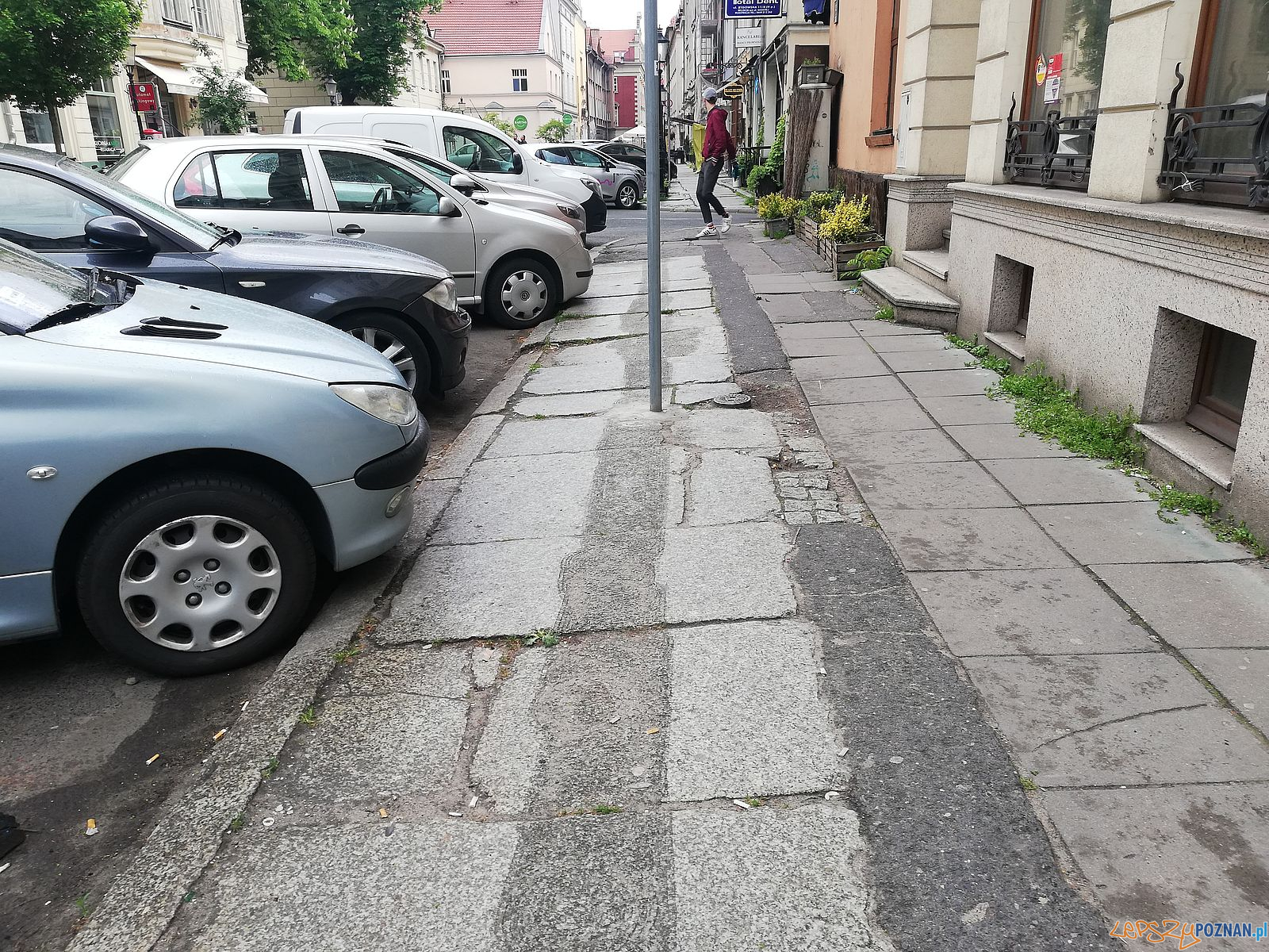 Żydowska, zniszczone płyty  Foto: