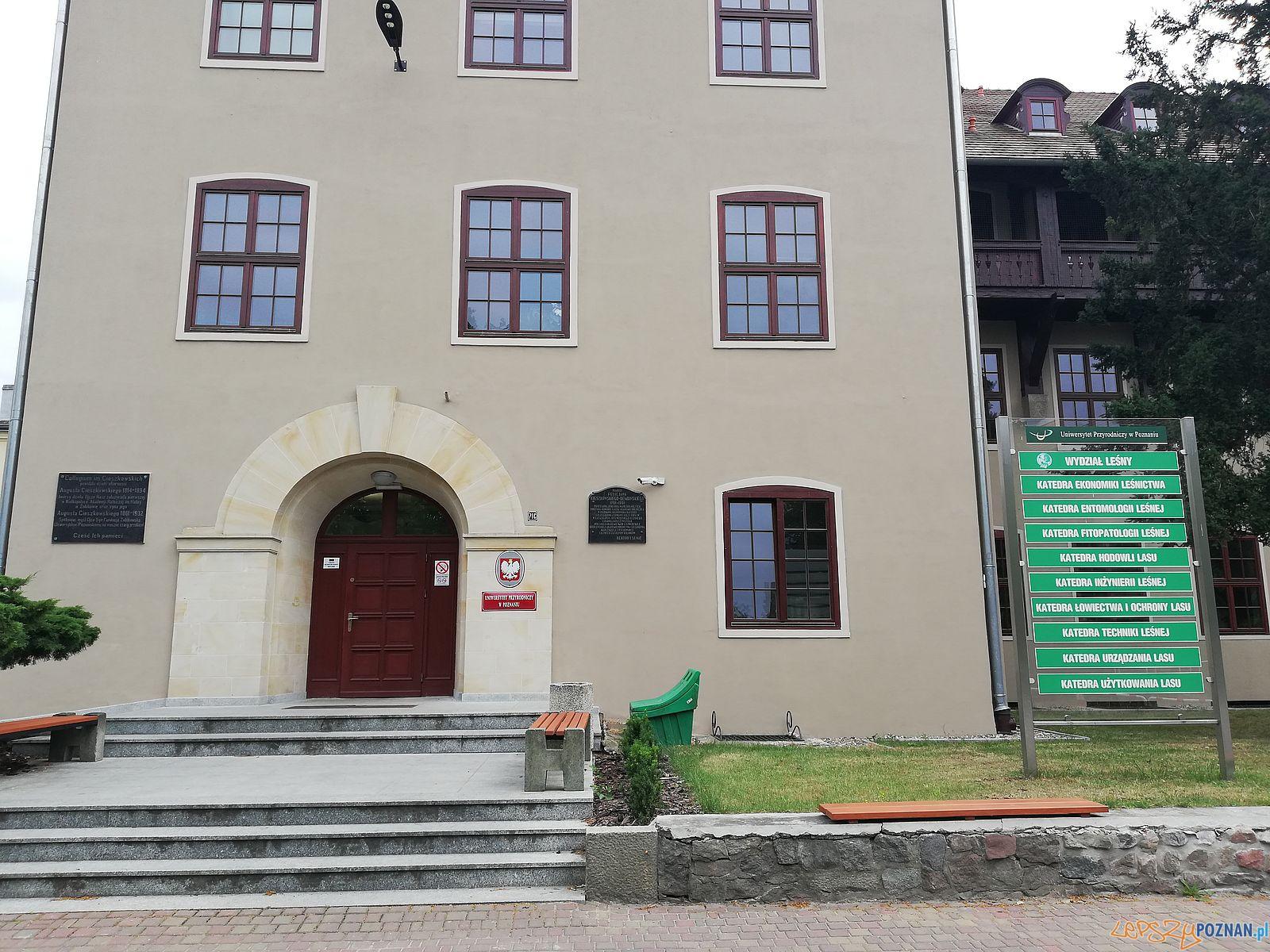 Collegium Cieszkowskich Uniwersytet Przyrodniczy  Foto: Tomasz Dworek