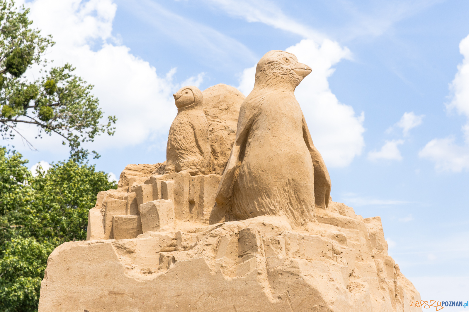 Poznań Sand Festival 2019, czyli Festiwalu Rzeźby Piaskowej -  Foto: Paweł Rychter