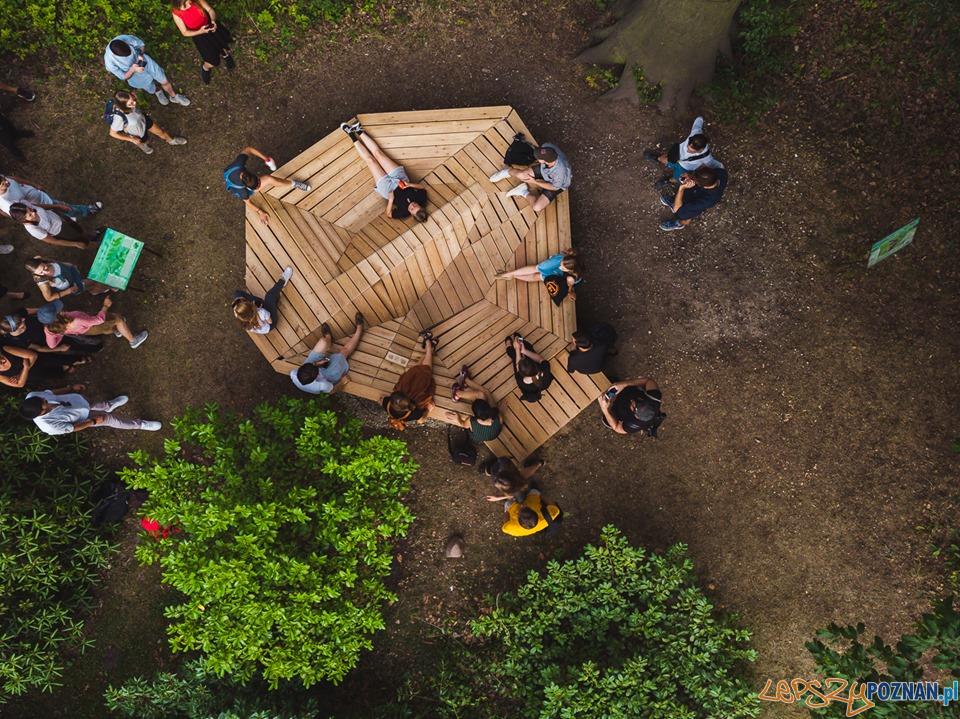 Ogród Dendrologiczny - Mood for Wood  Foto: Uniwersytet Przyrodniczy - materiały prasowe