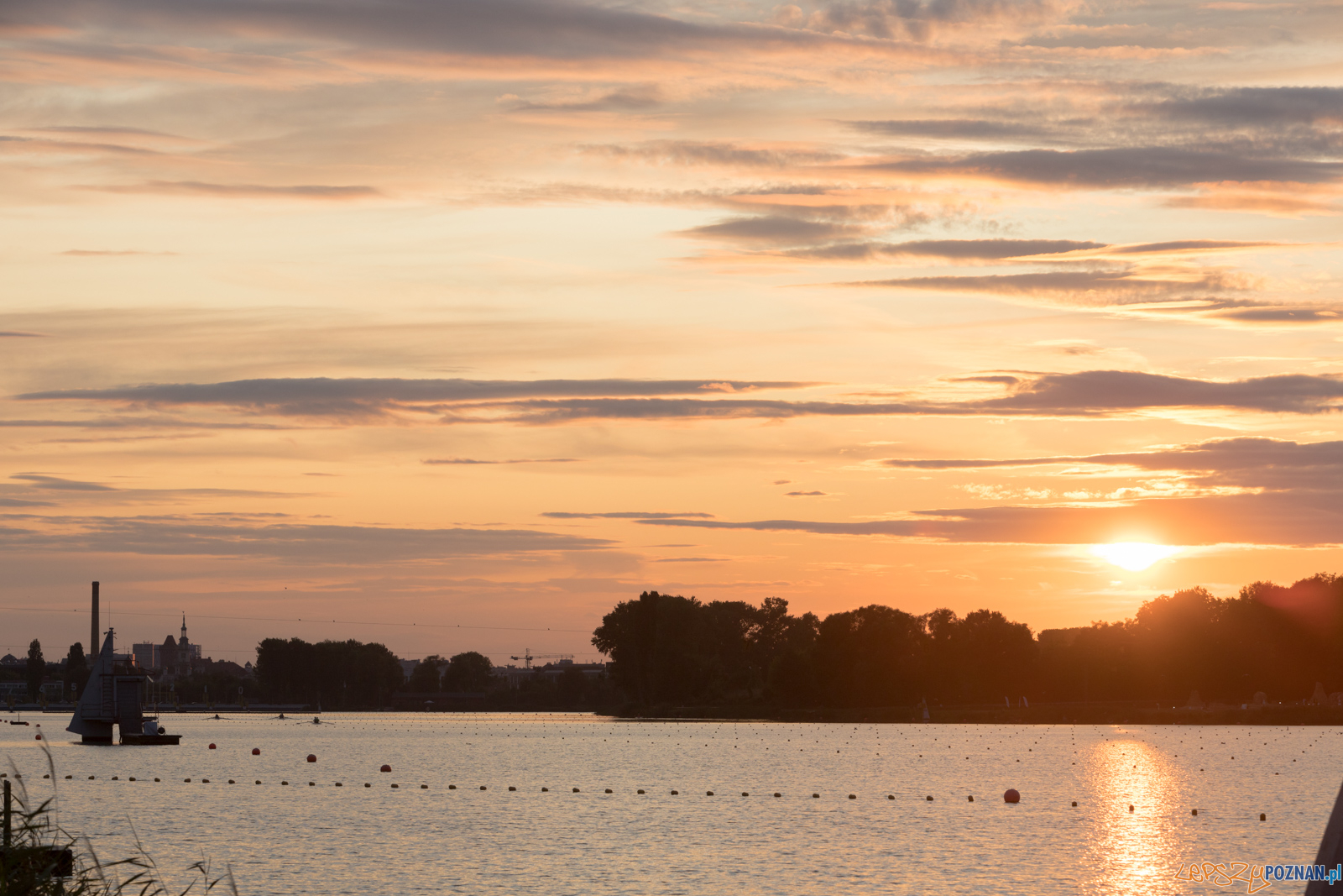 Jezioro Malta  Foto: lepszyPOZNAN.pl/Piotr Rychter