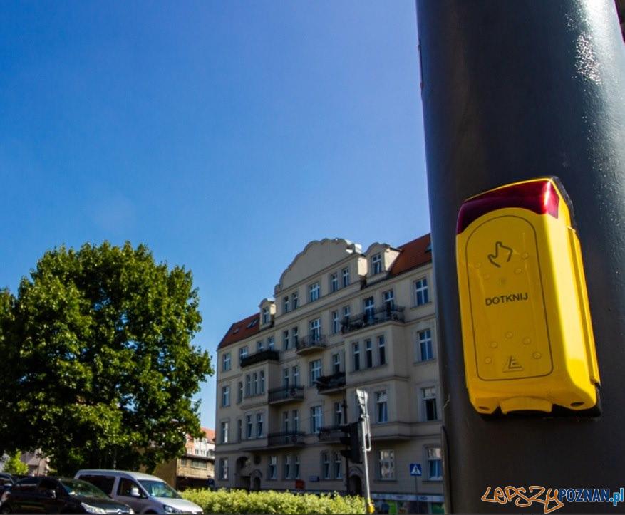 Przycisk przejście dla pieszych  Foto: ZDM
