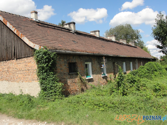 Opolska_stare budynki (3)  Foto: ZKZL