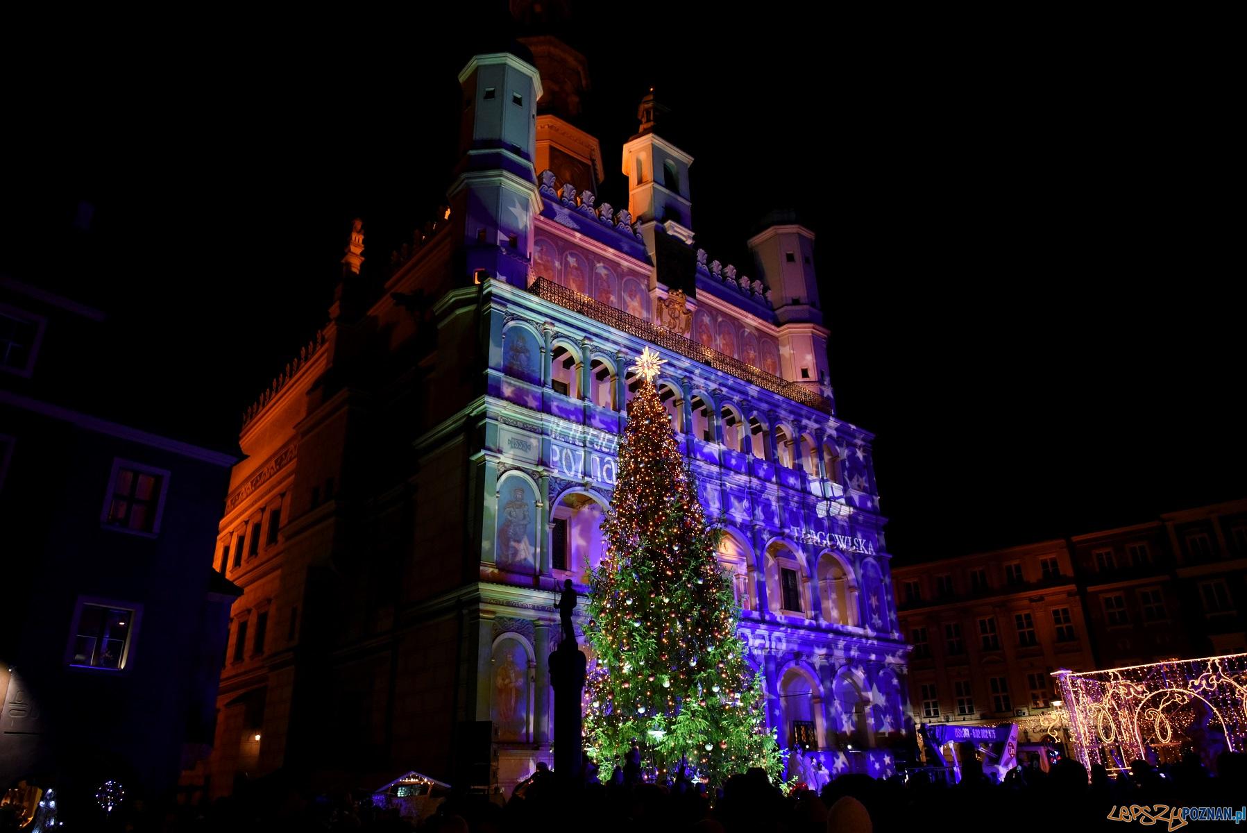 Poznań rozświetlony przed Bożym Narodzeniem  Foto: materiały prasowe / UMP