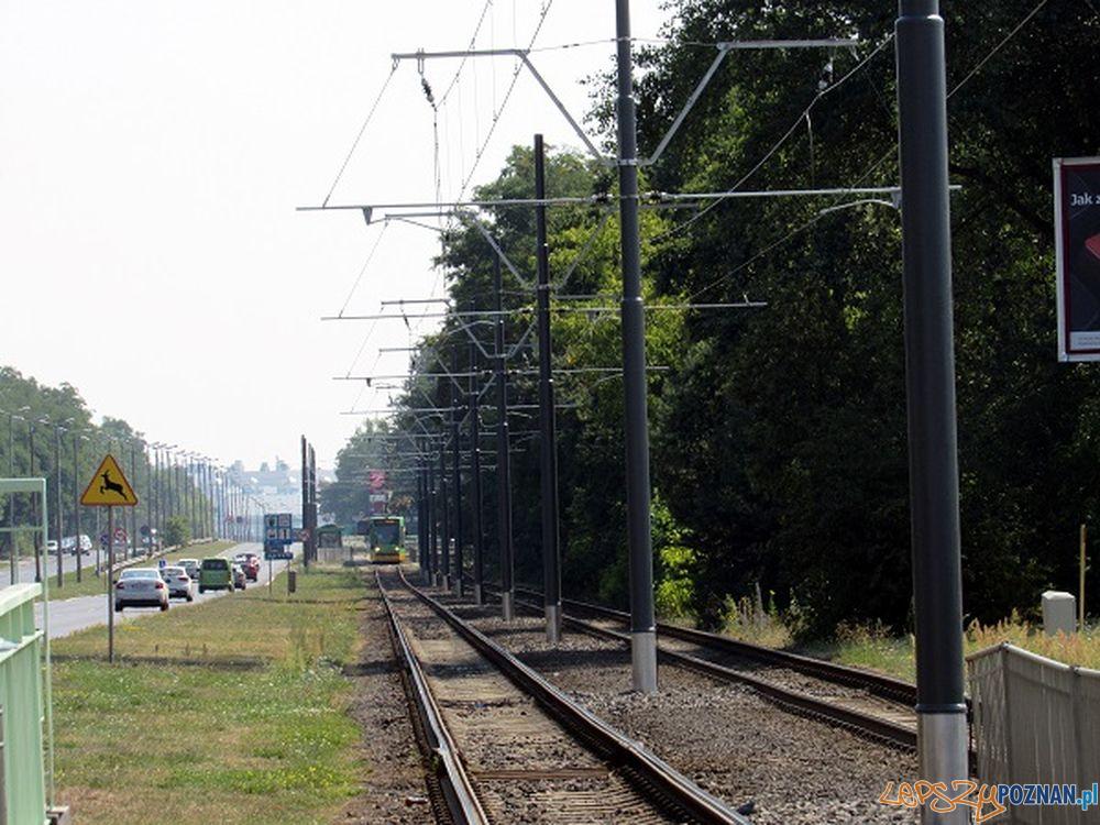 Trasa Warszawska  Foto: ZTM