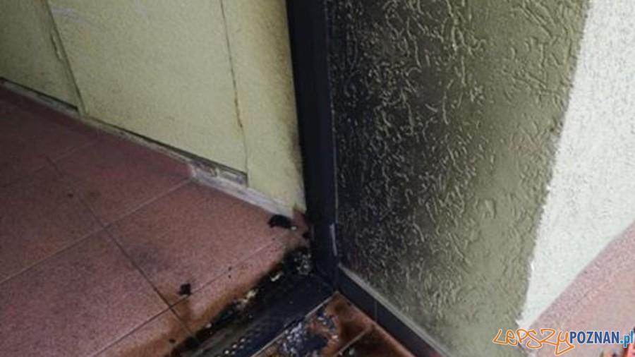 Podpalenie  Foto: fb / Antoninek