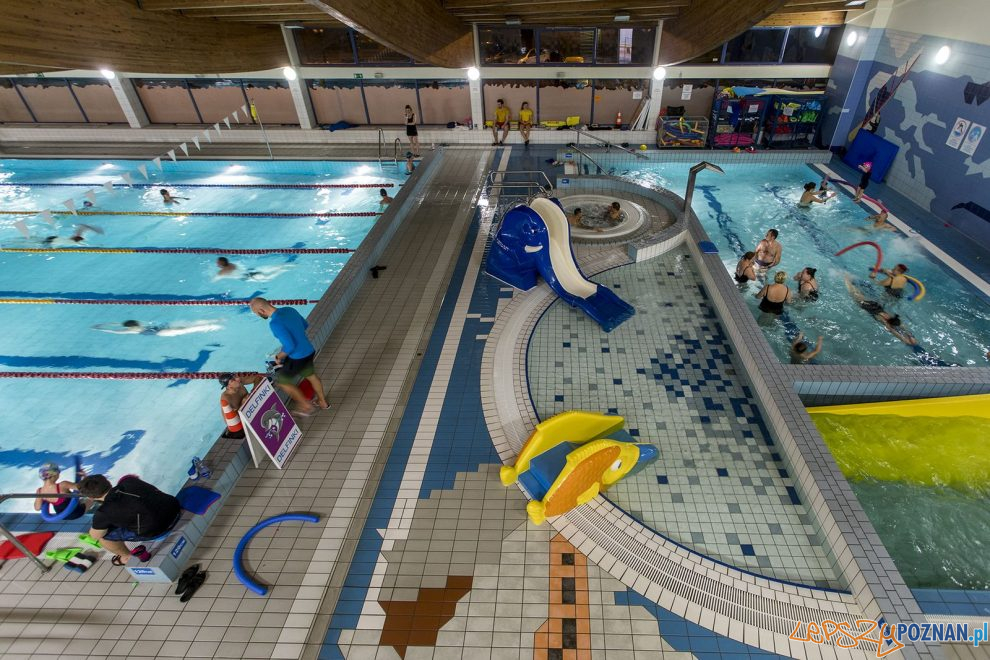 Pływalnia Atlantis  Foto: Adam Cereszko / materiały prasowe POSiR