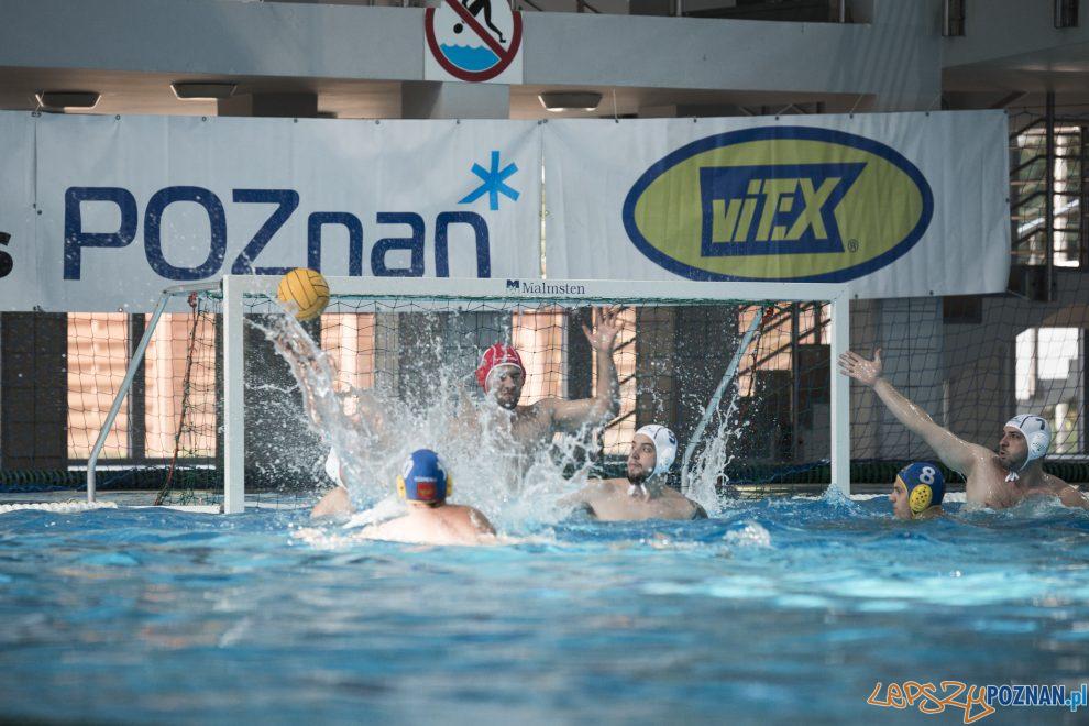 Box Logistics Waterpolo Poznań – Neptun Łódź  Foto: lepszyPOZNAN.pl/Ewelina Jaśkowiak