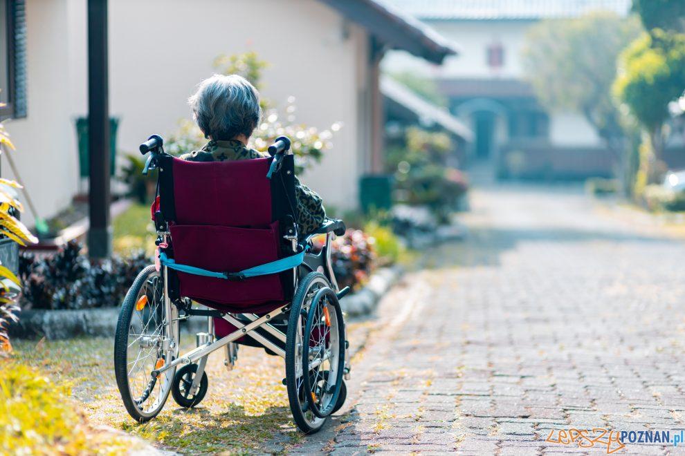 niepełnosprawni  Foto: Steven HWG
