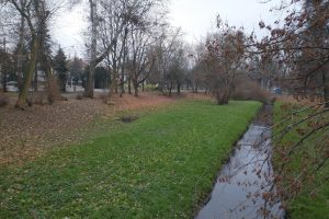 Park Wodziczki  Foto: materiały prasowe / ZZM