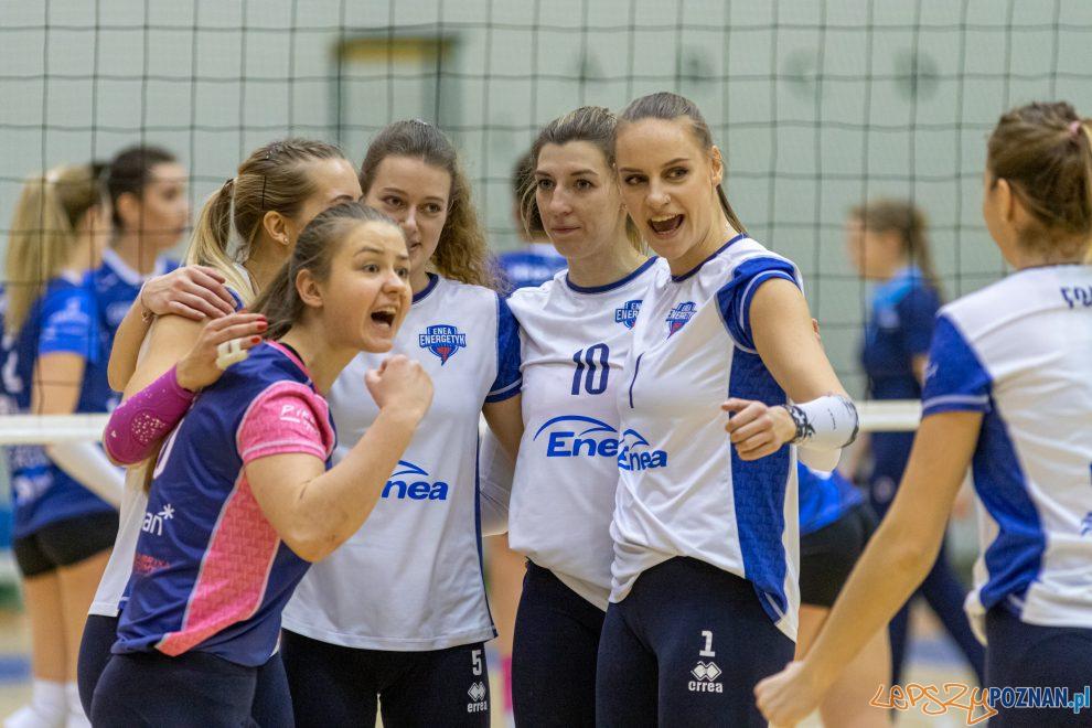 Enea Energetyk Poznań - Częstochowianka Częstochowa  Foto: lepszyPOZNAN.pl/Piotr Rychter