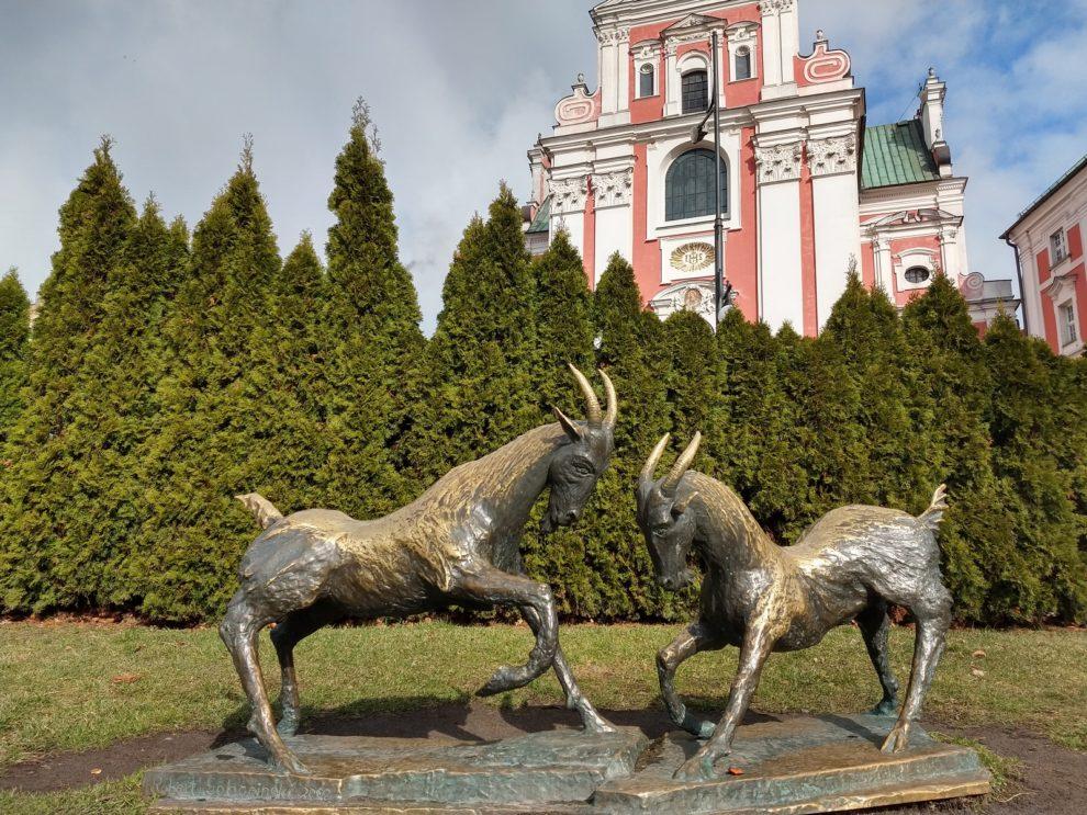 Park Chopina - Koziołki  Foto: Tomasz Dworek / ROSM