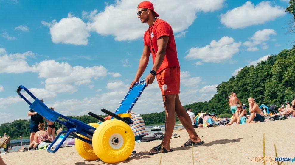 Wózek amfibia na kąpielisku  Foto: materiały prasowe / UMP