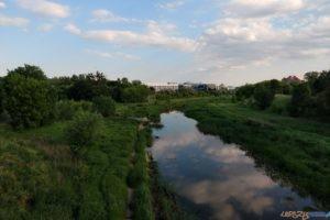 Srodka poludnie Cybina Most Mieszka 20210608 (3)  Foto: Tomasz Dworek